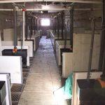 Vista de una sala de lechoneras